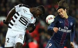 Prediksi Jitu Rennes vs Paris Saint Germain 8 Januari 2018